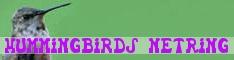 Hummingbirds NetRing
